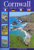 Cornwall Foreign Language Guide